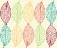 Fondo con las hojas Fotografía de archivo