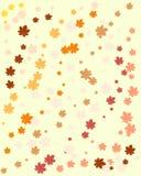 Fondo con las hojas Imagen de archivo libre de regalías