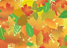 Fondo con las hojas brillantes del otoño Fotos de archivo