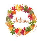Fondo con las hojas de otoño multicoloras Ilustración del vector Foto de archivo