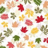 Fondo con las hojas de otoño multicoloras Ilustración del vector Fotos de archivo libres de regalías