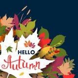 Fondo con las hojas de otoño multicoloras Ilustración del vector Fotografía de archivo libre de regalías