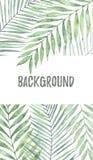 Fondo con las hojas de palma de la acuarela Elementos tropicales del diseño Imágenes de archivo libres de regalías