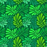 Fondo con las hojas de palma Modelo inconsútil tropical con Mons Imagenes de archivo