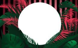 Fondo con las hojas tropicales ilustración del vector