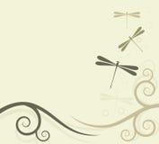 Fondo con las libélulas Imágenes de archivo libres de regalías