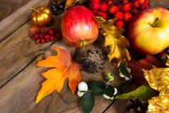Fondo con las manzanas, hoja de oro de la acción de gracias del roble Imagen de archivo