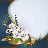 Fondo con las orquídeas stock de ilustración