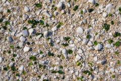 Fondo con las piedras blancas y el vidrio verde imagen de archivo libre de regalías
