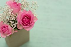 Fondo con las rosas Fotos de archivo libres de regalías