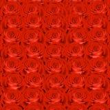 Fondo con las rosas rojas Foto de archivo libre de regalías