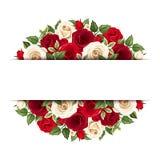 Fondo con las rosas rojas y blancas Vector EPS-10 Imagen de archivo libre de regalías