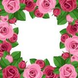 Fondo con las rosas rojas y rosadas. libre illustration