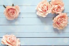 Fondo con las rosas rosadas en tablones de madera azules Fotos de archivo libres de regalías