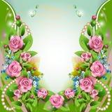 Fondo con las rosas rosadas y los descensos Imagen de archivo libre de regalías