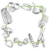 Fondo con las verduras, blancos y negros ilustración del vector
