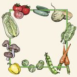 Fondo con las verduras ilustración del vector
