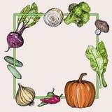 Fondo con las verduras exhaustas de la mano stock de ilustración