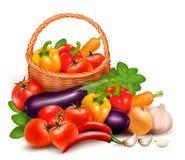 Fondo con las verduras frescas en cesta. stock de ilustración
