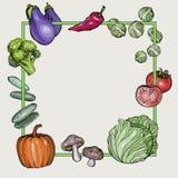 Fondo con las verduras a mano stock de ilustración