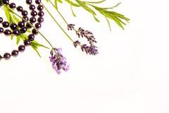 Fondo con lavanda, y perlas púrpuras foto de archivo libre de regalías