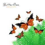 Fondo con le farfalle luminose Fotografia Stock Libera da Diritti