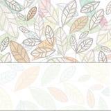 Fondo con le foglie leggere Fotografia Stock
