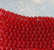 Fondo con le piccole perle rosse Fotografia Stock