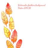 Fondo con le piume disegnate a mano luminose dell'acquerello Royalty Illustrazione gratis