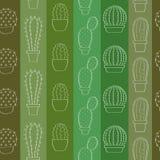 Fondo con los cactus Imágenes de archivo libres de regalías