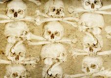 Fondo con los cráneos y los huesos humanos stock de ilustración