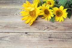 Fondo con los girasoles amarillos en los viejos tableros de madera Fotografía de archivo libre de regalías