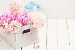 Fondo con los jacintos de las flores frescas Foto de archivo libre de regalías