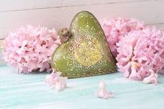 Fondo con los jacintos de las flores frescas y h decorativo verde Fotos de archivo libres de regalías