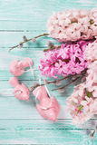Fondo con los jacintos de las flores frescas y los pájaros decorativos Fotos de archivo libres de regalías