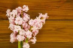 Fondo con los jacintos de las flores frescas y los tablones de madera lugar Foto de archivo