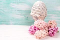 Fondo con los jacintos rosados frescos y terracota decorativa Imagenes de archivo