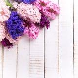 Fondo con los jacintos rosados, violetas, azules, púrpuras frescos en wh Imagenes de archivo