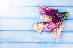 Fondo con los jacintos rosados, violetas frescos y corazón en azul Foto de archivo