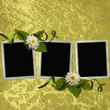 Fondo con los marcos Imagen de archivo libre de regalías