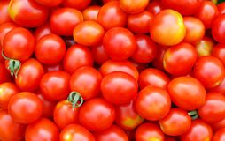 Fondo con los tomates de cereza ecológicos Imagen de archivo libre de regalías