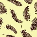 Fondo con plumas Foto de archivo