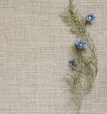 Fondo con una composición de ramificaciones y de flores Fotografía de archivo libre de regalías