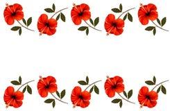Fondo con una frontera de flores rojas Fotografía de archivo