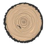 Fondo conceptual con los árbol-anillos Ejemplo del anillo aislado en blanco stock de ilustración