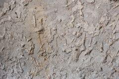 Fondo concreto de la textura Estructura gris Foto de archivo