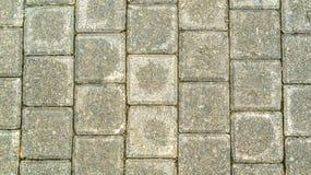 Fondo concreto della pavimentazione del cemento Fotografia Stock
