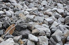 Fondo congelado de la roca con la rama Fotografía de archivo