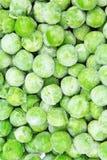 Fondo congelado de la textura de los peases del guisante Modelo verde del fondo del pease Fotos de archivo