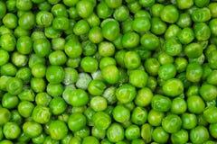 Fondo congelado de la textura de los peases del guisante Modelo verde del fondo del pease Fotografía de archivo